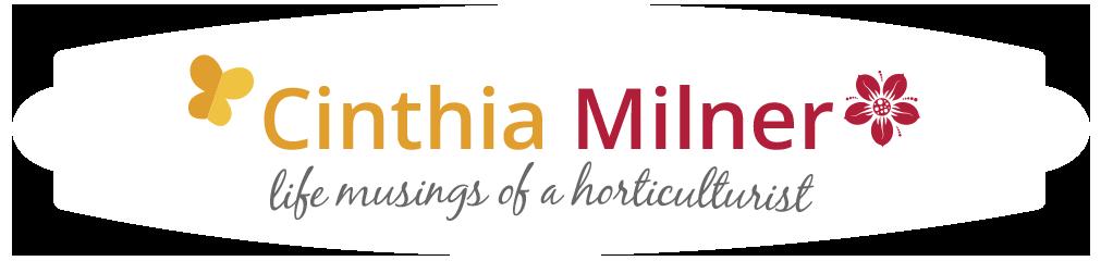 Cinthia Milner  •